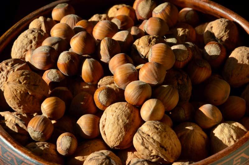 Les noix et noisettes, des aliments exceptionnels