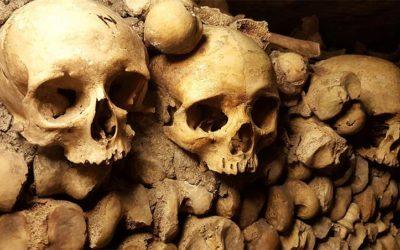 Retour dans les catacombes !